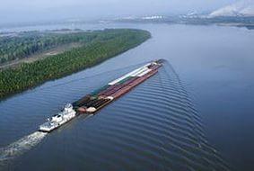 В чем могут быть сложности при перевозке сборных грузов из Индии в Россию?